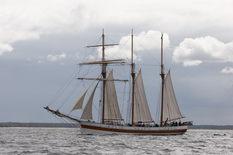 2012 08 14 sail away 10